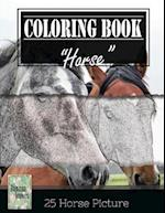 Horse Sketch Gray Scale Photo Adult Coloring Book, Mind Relaxation Stress Relief