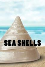 Sea Shells Journal / Notebook