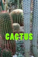 Cactus (Journal / Notebook)