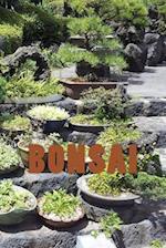 Bonsai (Journal / Notebook)