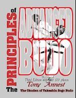 The Principles of Advanced Budo
