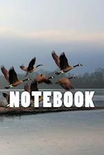 Migrating Geese Notebook