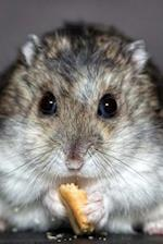 Darling Dwarf Hamster Nibbling a Cracker Portrait Pet Journal