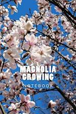 Magnolia Growing