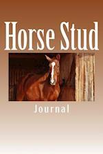 Horse Stud