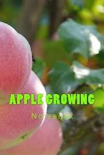 Apple Growing