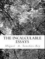 The Incalculable Essays