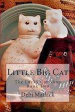 Little Big Cat