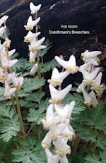 For Mom Dutchman's Breeches