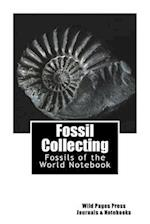 Fossil Collecting