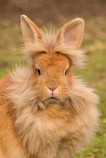Simply Too Adorable Lionhead Domestic Rabbit Journal
