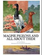 Magpie Pigeons and All about Them