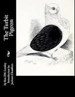 The Turbit Pigeon