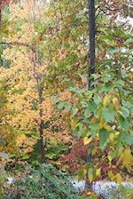 Journal Autumn Colors Fall Foliage