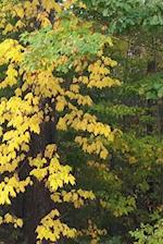 Journal Fall Colors Leaves Turning