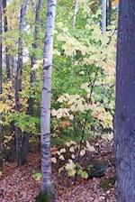 Journal Fall Foliage Autumn Trees