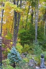 Journal Fall Foliage Colors Autumn Landscape