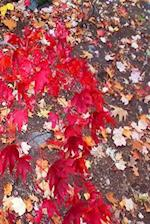 Journal Fall Foliage Red Japanese Maple Leaves