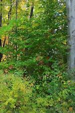 Journal Nature Late Fall Season