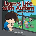 Liam's Life with Autism: Sensory Overload