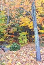 Journal Autumn Season Forest