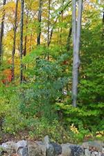 Journal Pretty Autumn Landscape