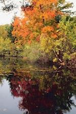Journal Fall Lake Autumn Season
