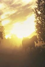 Journal Herding Horses Sunset Equine