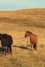 Journal Horse Herd West Equine