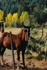 Journal Horses Yellow Fall Trees Equine