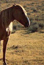 Journal Large Chestnut Equine Horse