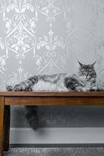 Silver-Gray Striped Long-Haired Cat on a Bench