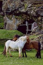 Two Gorgeous Horses in a Green Pasture Journal