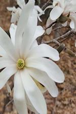 Journal Beautiful White Flower