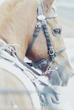 Such a Pretty Creamy Tan Colored Horse in Profile Journal