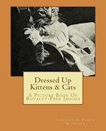 Dressed Up Kittens & Cats
