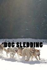 Dog Sledding