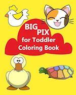 Big Pix for Toddler Coloring Book