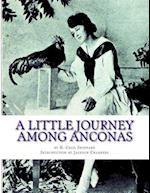 A Little Journey Among Anconas
