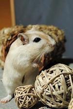Cute Gerbil Pet Journal