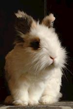 Soft Fluffy Baby Bunny Rabbit Journal