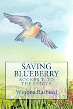 Saving Blueberry