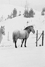 Winter Theme Journal Horses in Winter