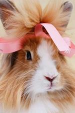Fluffy Brown and White Bunny Rabbit with a Pink Bow Pet Journal