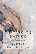 Turtles in Nature Notebook