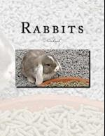 Rabbits Notebook