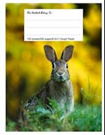 Graph Paper Workbook, 5x5 Graph Ruled Paper, 8.5.X 11, 100 Sheets, 200 Pages, Bunny Rabbit