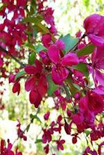 Full Bloom Journal Springtime