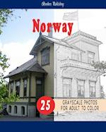Cities Grayscale Coloring Book for Adult Landmarks in Norway Grayscale Coloring Book