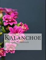 Kalanchoe Notebook